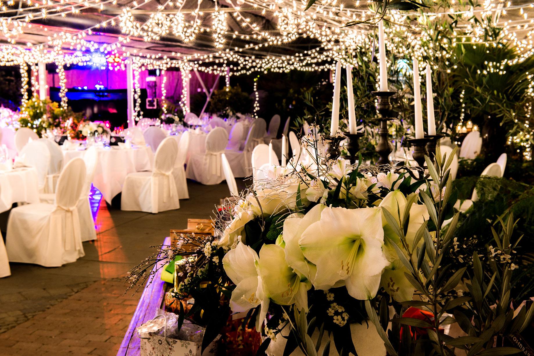 Hochzeit biodom esslingen